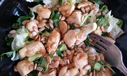 Asian Apple Chicken Salad