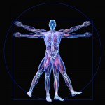 The Whole Body Approach to Health