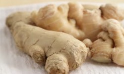 Nutritional Support: Ginger Root